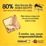 04-02 Dengue Domicilios